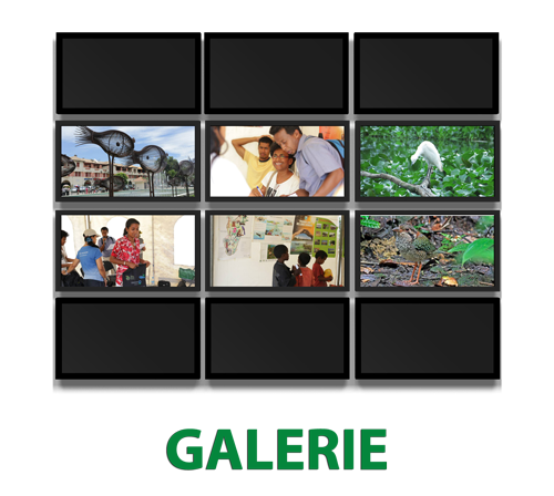 gallery-asity